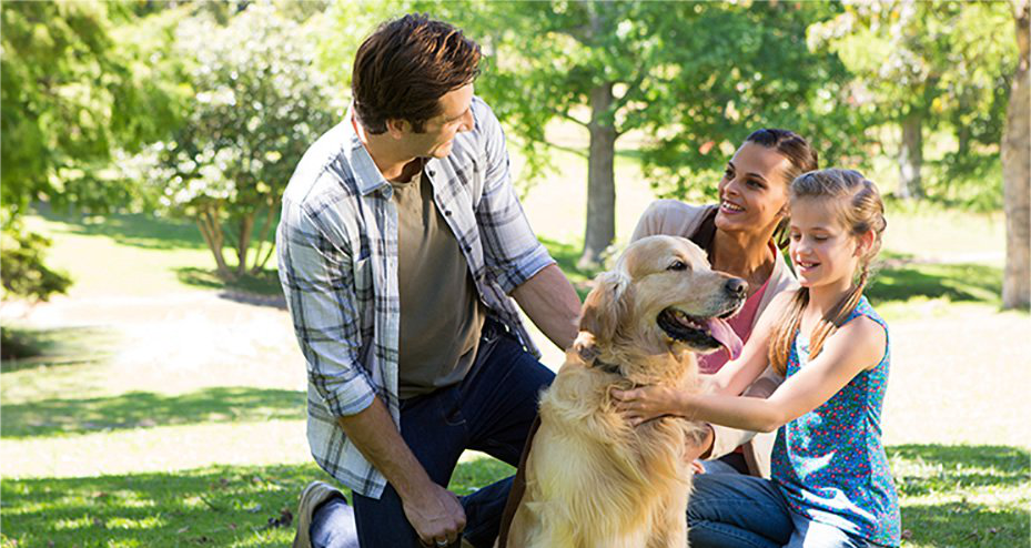 Family on lawn with dog.
