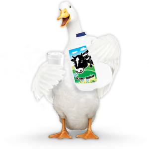 Aflac duck with carton of milk