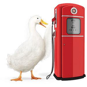 Aflac duck at gasoline pump